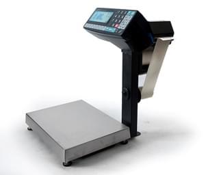 весы-регистраторы МАССА-К R2P10-1