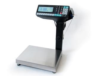 весы-регистраторы МАССА-К RP10-1