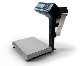 весы-регистраторы МАССА-К RP-10